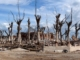 Villa Epecuén – The town that spent 25 years underwater! 8