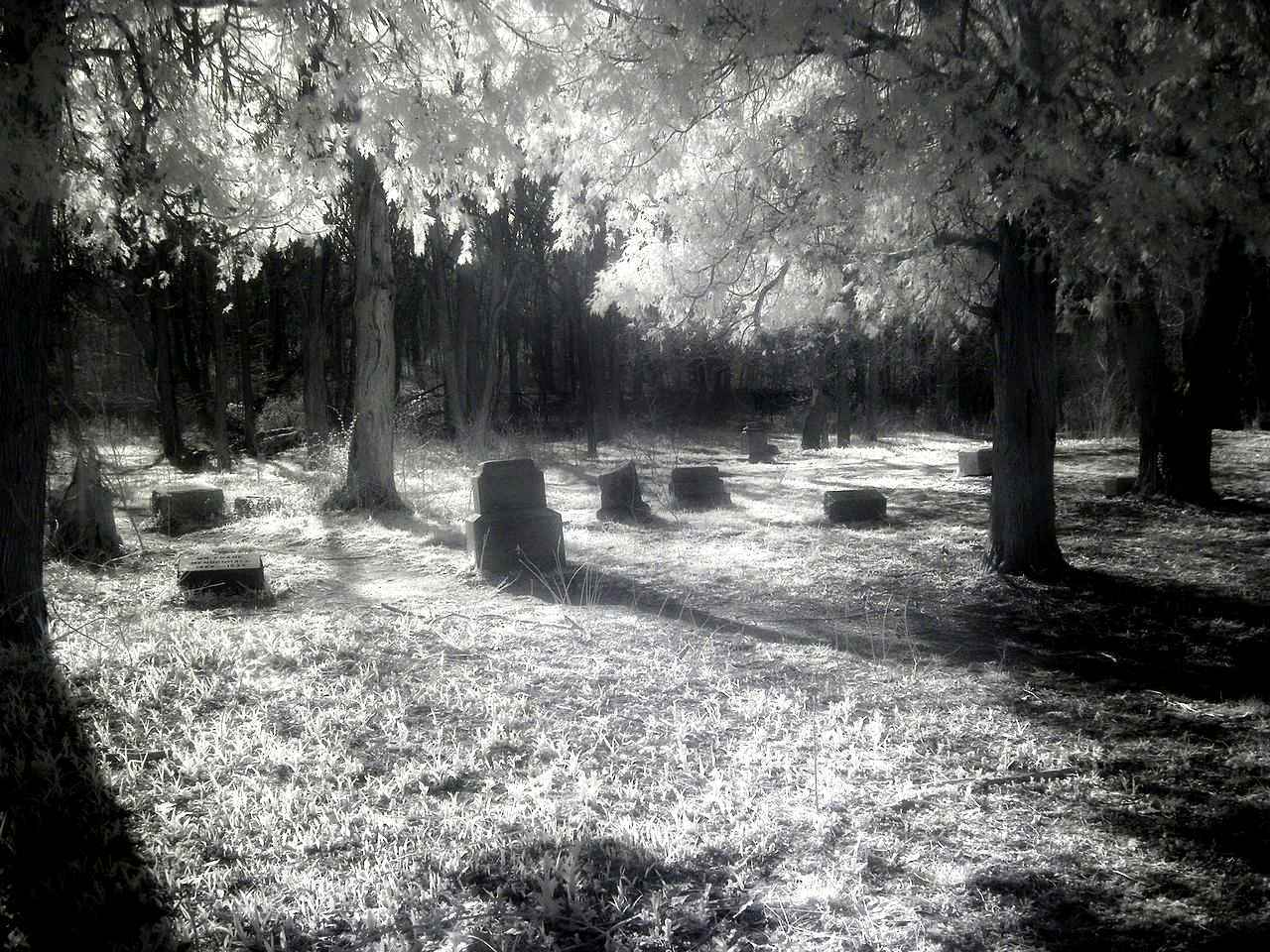 6 most haunted places to visit in Chicago 8