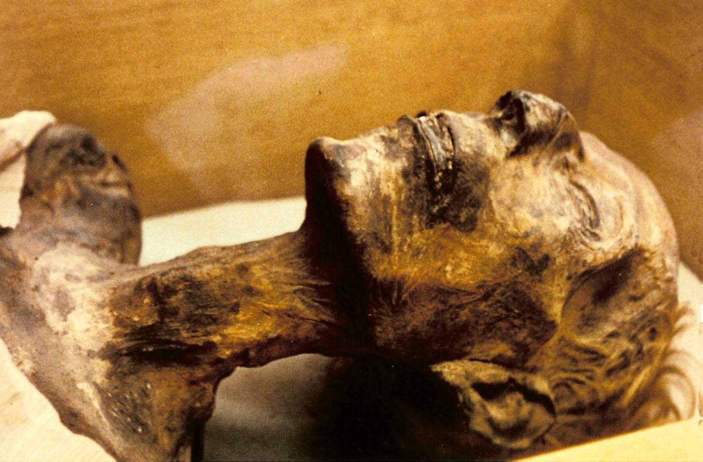 21 incredibly well-preserved human bodies that survived the ages astonishingly 14