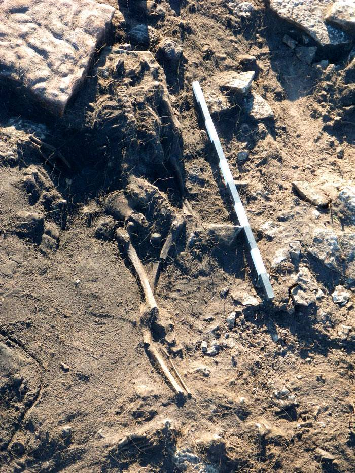 The Sandby Borg Massacre: What's the mystery behind this 1,600-year-old tragedy? 6