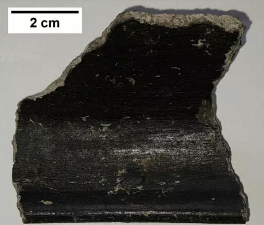 De wetenschappers verwachtten dat de coating een houtskoolpasta zou zijn, niet het resultaat van een geavanceerd gebruik van nanotechnologie