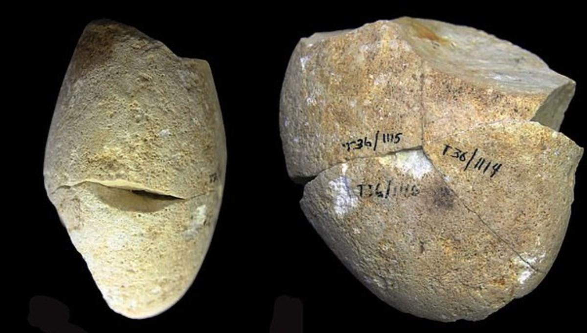 Oldest stone tool