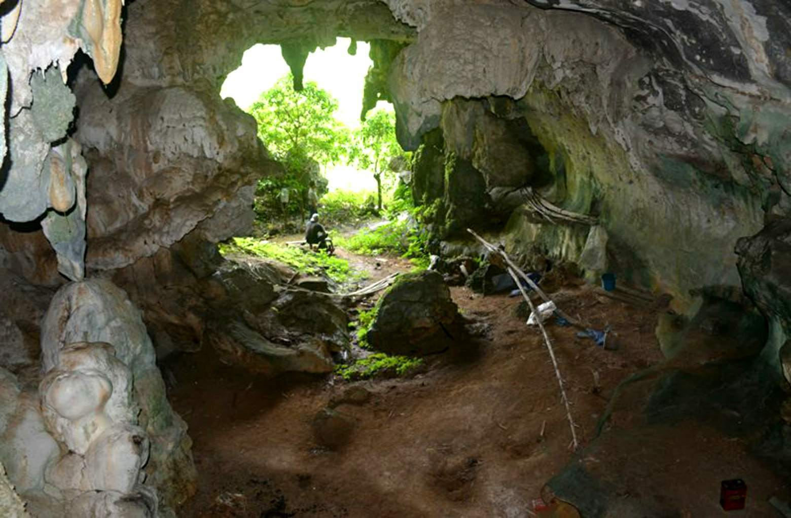 Leang Tedongnge cave on the island of Célebe in Indonesia