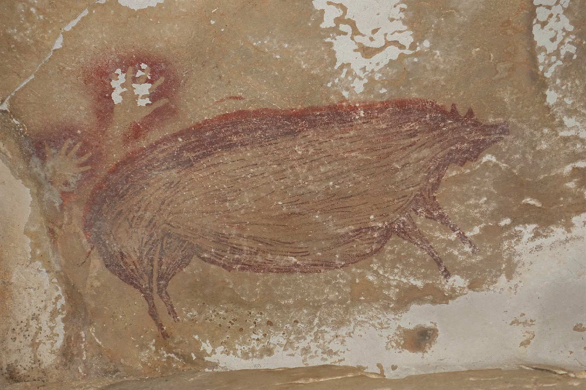 cave painting oldest