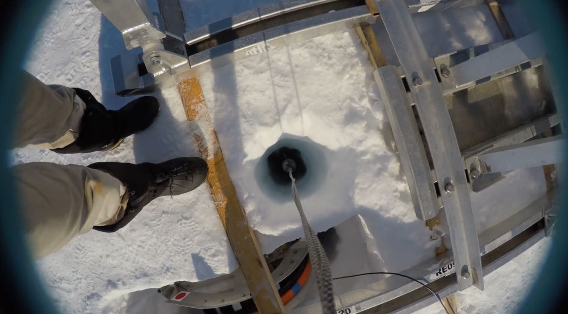 Scientists find unexpected animal life far beneath Antarctica's floating ice shelves