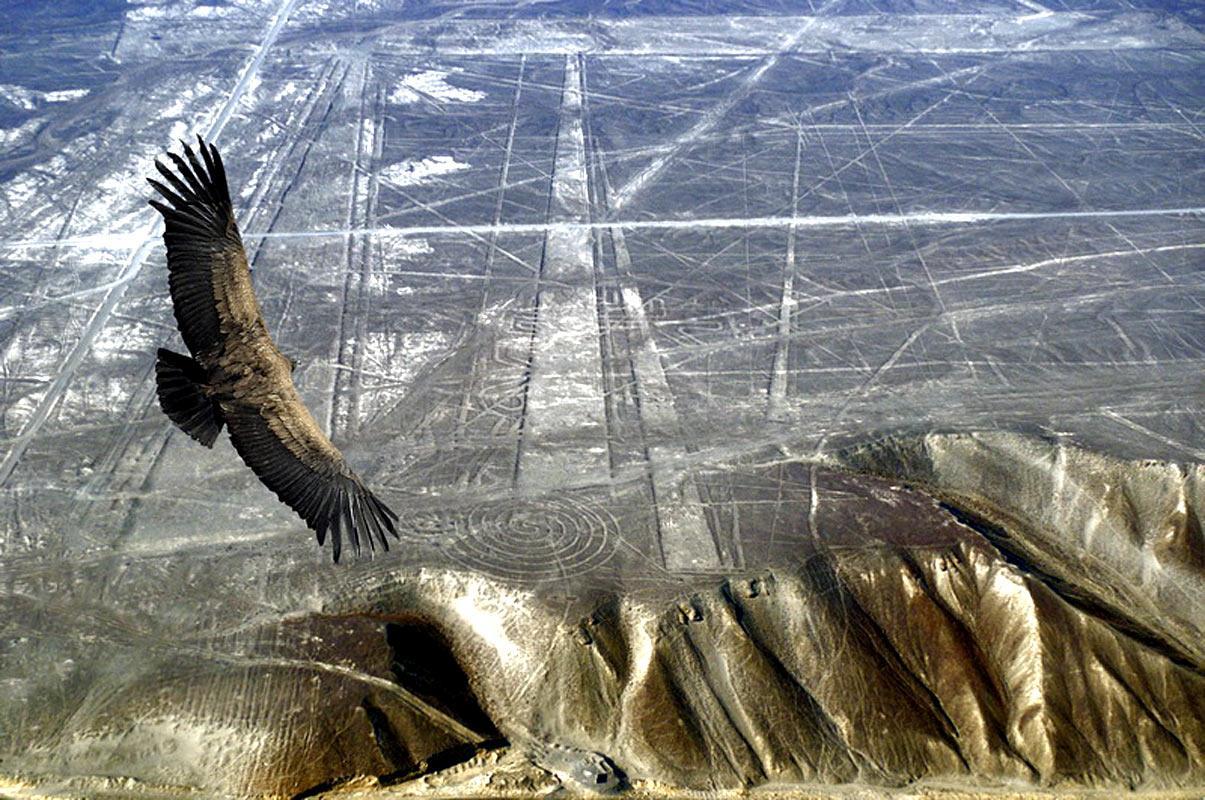 The Nazca Lines: Ancient Vimana Runways? 4