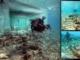 Βυθισμένη πόλη Pavlopetri ή Atlantis: 5,000 ετών πόλη στην Ελλάδα ανακαλύπτεται 3