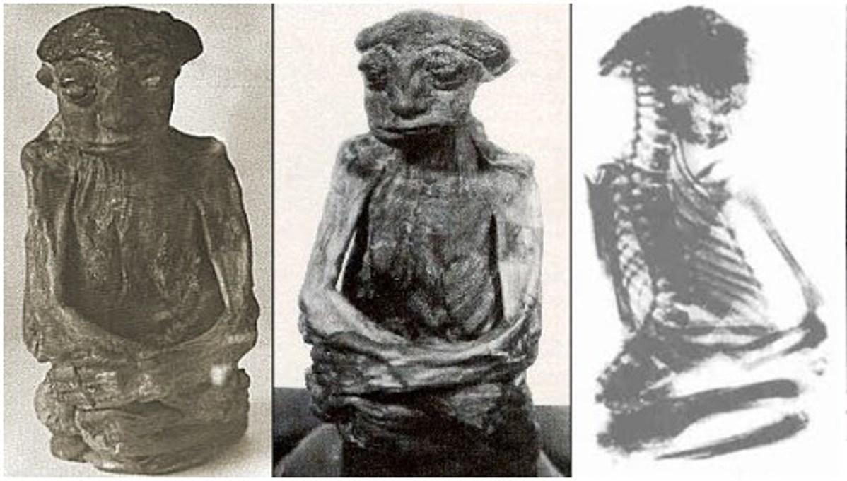 Hier zijn meerdere bekende foto's en röntgenfoto's gemaakt van de mummie die in het San Pedro-gebergte is gevonden