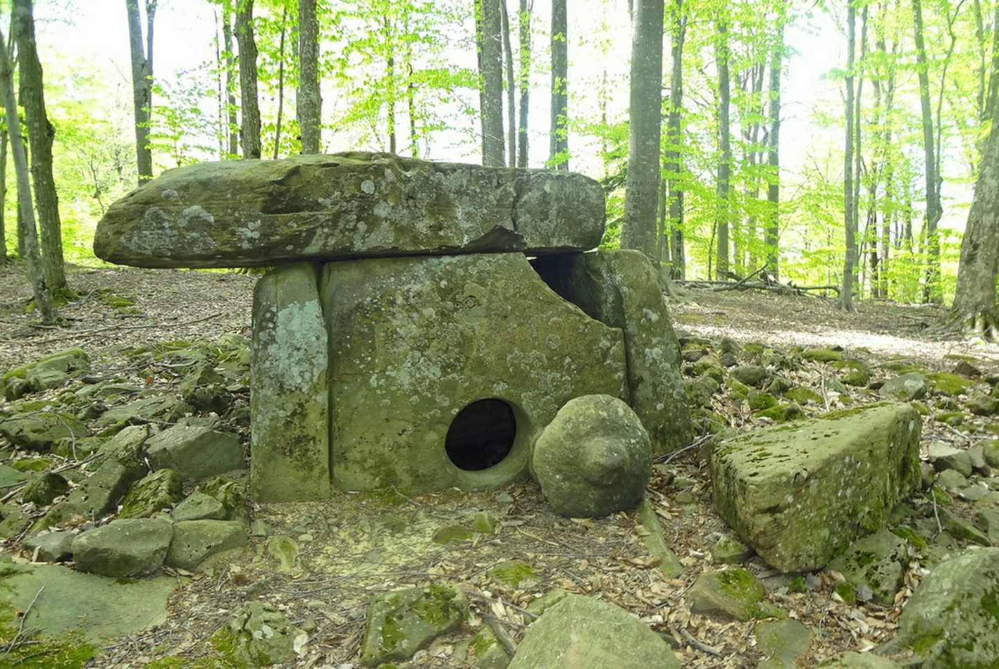 A rare dolmen, the cork of which has been preserved