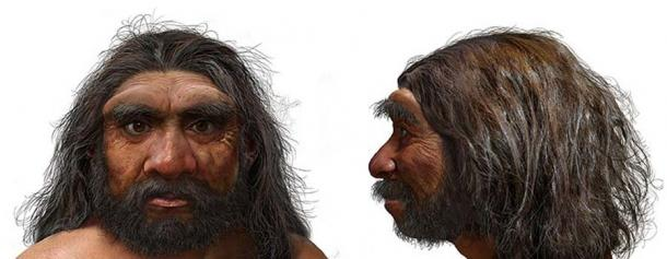 The 'Dragon Man' fossil could replace Neanderthals as our closest relative 5