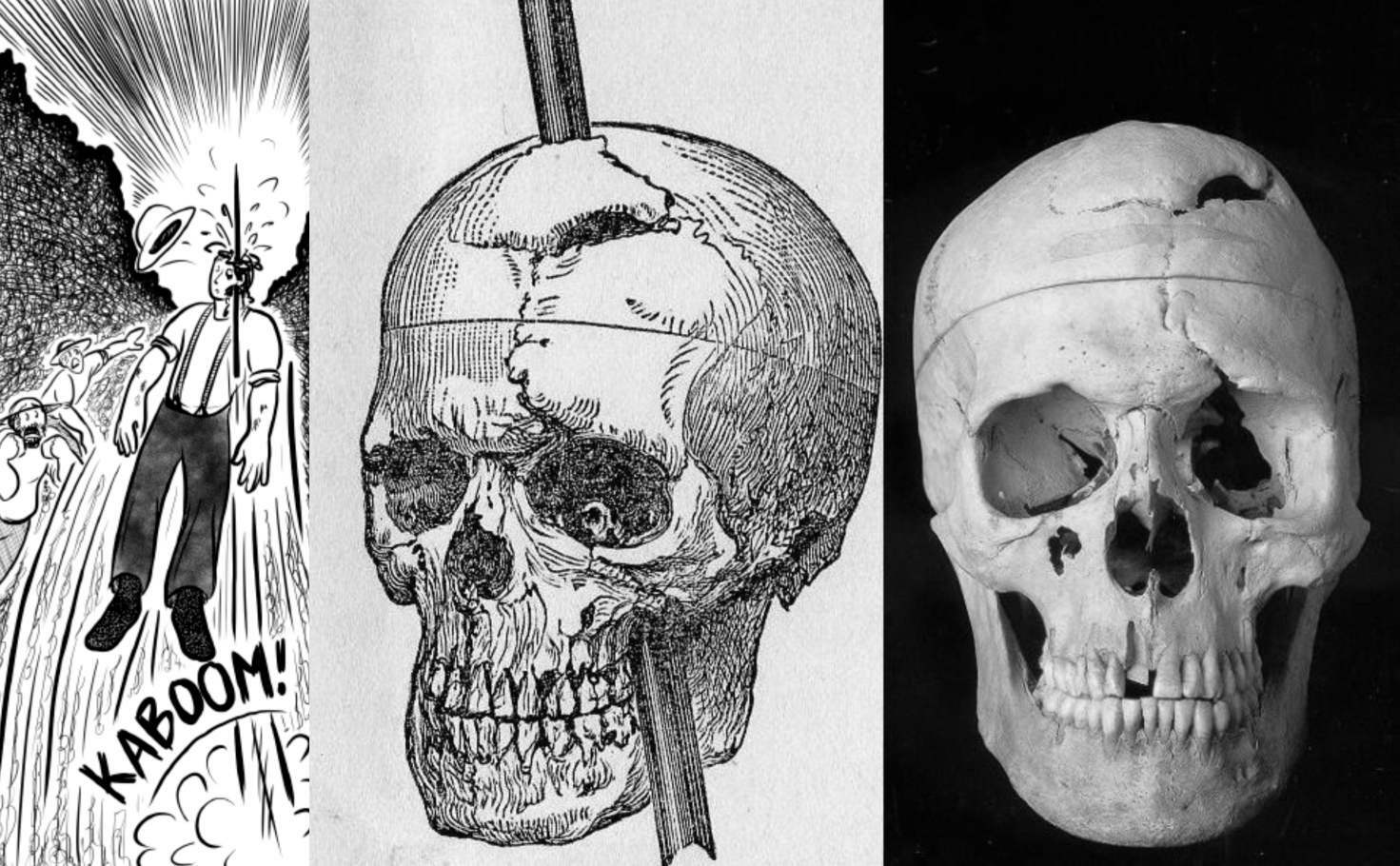 It's worth saying that the tamping iron was javelin-like, because that's precisely how it behaved. The force of the explosion behind the spike drove it out with incredible force, and it headed straight for Gage.The 13-pound spike entered the left side of his face, right through the side of his cheek and open mouth (because he had been about to speak)and went up into his head. It went through the bone, the brain, and then out the other side. But it didn't stop there. All three feet, seven inches of the rod went through his head, then out the other side, and landed roughly 80feet away, smeared with blood and brains. Gage immediately collapsed onto the ground, convulsing.