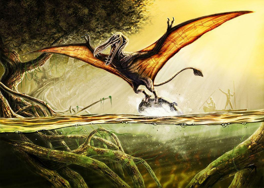 Kongamato – qui a dit que les ptérosaures étaient éteints ? 6