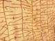 Noslēpumainais Rök Runestone brīdināja par klimata pārmaiņām tālā pagātnē 4