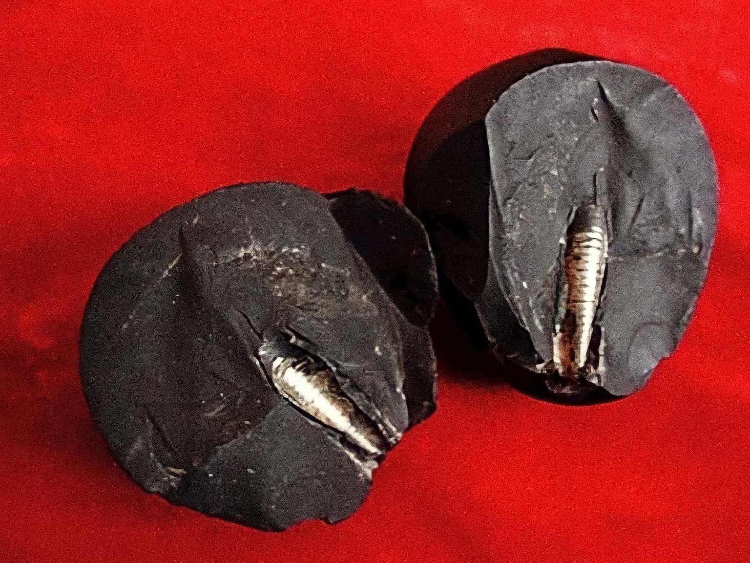 La pierre de Lanzhou : Cette pierre rare d'un collectionneur de Lanzhou a attiré l'attention de nombreux experts et collectionneurs. La pierre a été incrustée d'une barre de métal filetée et est soupçonnée d'être venue de l'espace.
