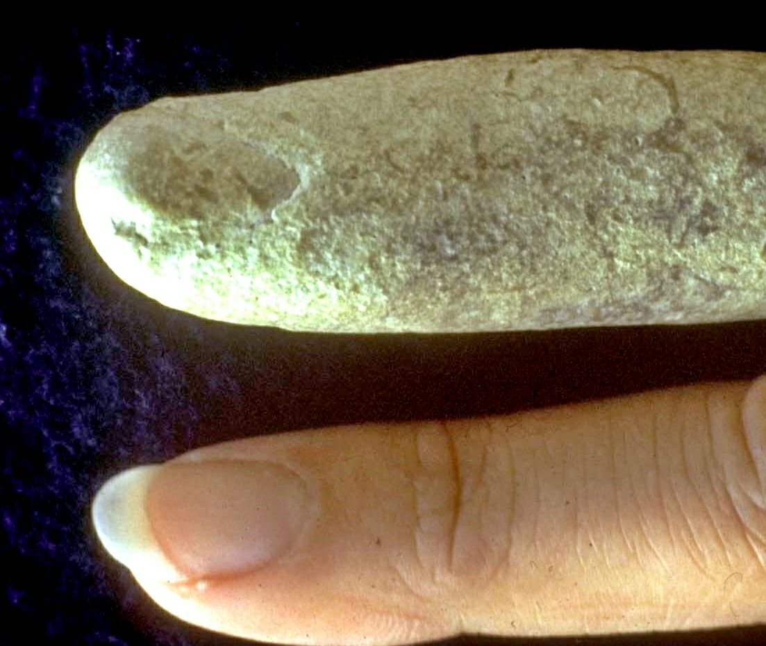 fossil finger