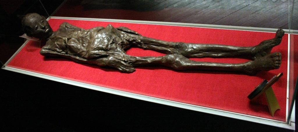 The Liber Linteus: An Egyptian mummy encased in a secret message 5